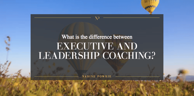 Whats Difference Between Executive >> What Is The Difference Between An Executive And A Leadership Coach
